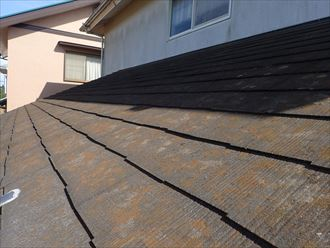松戸市樋野口で行った化粧スレート屋根調査で下屋根の塗装が劣化し苔・藻・カビが発生しています