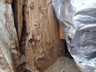木更津市 外壁の内部調査009_R