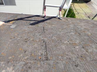 千葉市美浜区真砂で行ったスレート屋根調査で屋根全体に苔・藻・カビが発生
