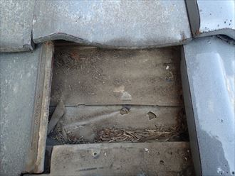 雨漏りの原因となる劣化した防水紙