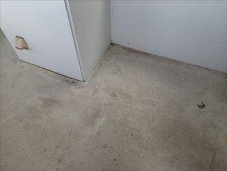 木更津市 タク動物病院 調査009_R