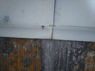 流山市美田で行った化粧スレート屋根調査で釘が浮いている棟板金