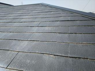 市川市本塩で行った化粧スレート屋根調査で塗装の剥がれによる屋根の色褪せ