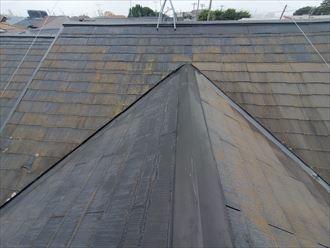 市川市若宮で行った化粧スレート屋根調査で防水性の低下により苔・藻・カビが発生した化粧スレート屋根