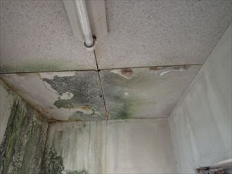 鴨川市の防水工事|排水ドレンの改修工事の様子です