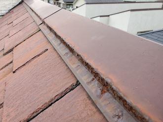 松戸市小山で行った台風15号被害のスレート屋根調査で棟板金の錆