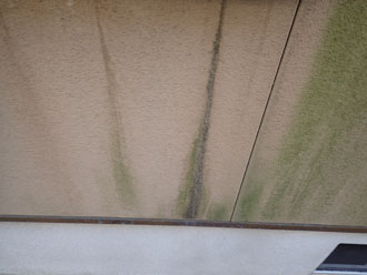 外壁のカビ