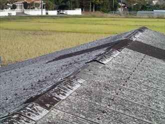 いすみ市 雨漏り調査