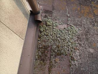 富津市 雨漏り調査2008_R