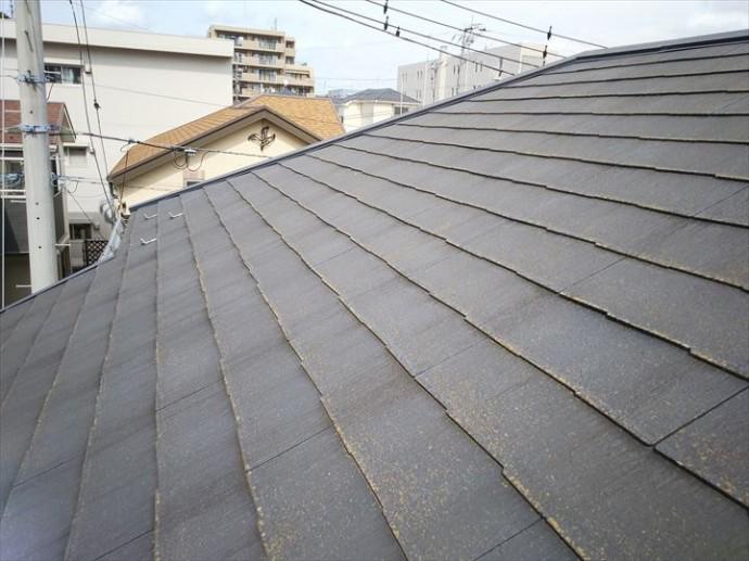 松戸市大橋で行ったコロニアル屋根調査で塗装の劣化により色褪せ