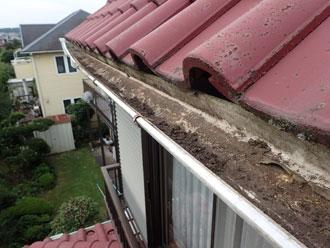 雨樋の詰まり 雨水排水不良
