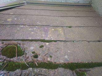 船橋市藤原で行った築30年が経過した化粧スレート屋根の調査で下屋根に雨漏りに繋がる苔を発見