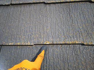 船橋市習志野台で行った屋根調査で防水性の低下により屋根に苔が発生