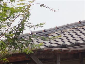 千葉市花見川区 落雷での瓦の被害004_R