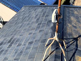 屋根に生えたカビ