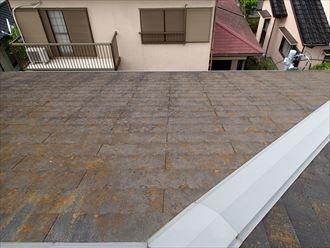 市原市 風害調査で屋根の上に012_R