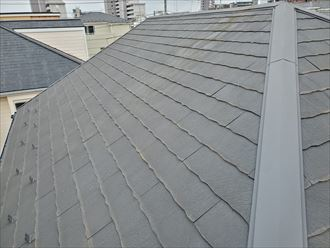 野田市岡田で行った屋根調査で塗装の剥がれにより防水性が低下し苔・藻・カビが発生