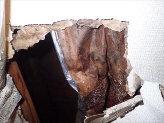 千葉市若葉区 アパート漏水散水検査005_R
