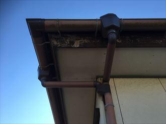 木更津市のK様より雨樋と軒天の調査のご依頼を頂きました