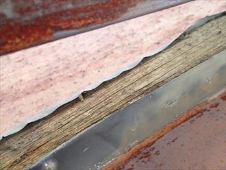 千葉市 倉庫屋根の雨漏り調査002_R