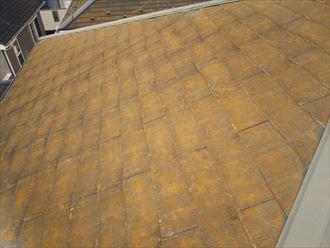 千葉市若葉区富田町で行った化粧スレート屋根調査で防水性の低下により苔・藻・カビが発生