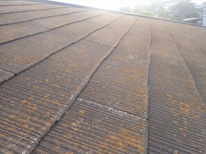 千葉市若葉区富田町で行った化粧スレート屋根調査で塗膜が剥がれ素地が露出している化粧スレートは耐久性の低下に繋がります