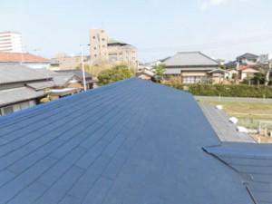 大屋根葺き替え後