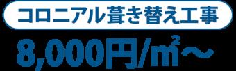 コロニアル葺き替え工事 8,000円/m2~