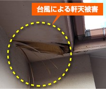 yanekouji-hoken7-jup-columns3