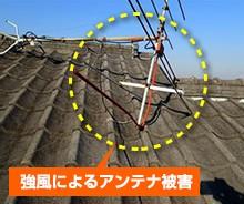 yanekouji-hoken9-jup-columns3