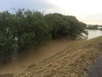 台風による豪雨で増水した川